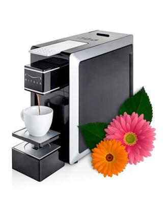 Cafetera Mitaca i8 Primavera